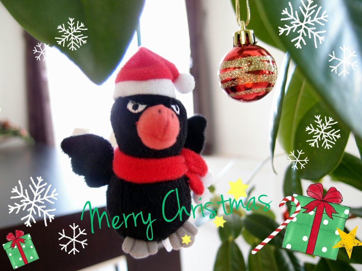 Merry Christmas☆_a0231828_00003587.jpg