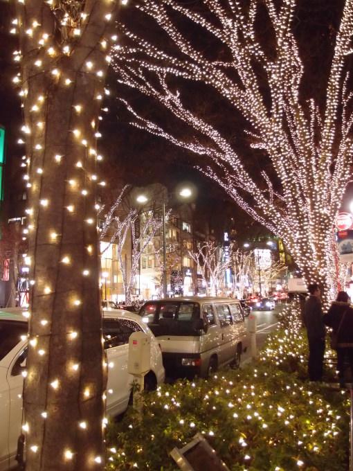 Merry Christmas☆_a0231828_00462550.jpg