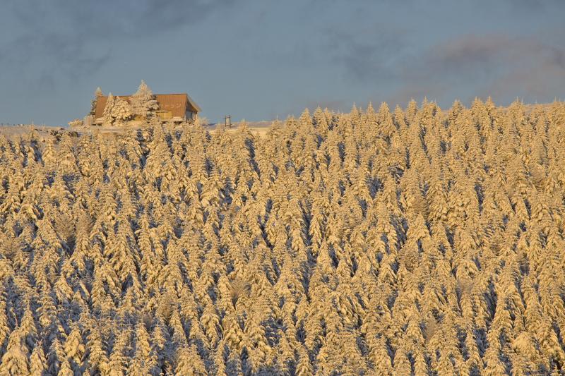 大雪の後、、、_c0167028_150586.jpg