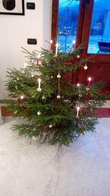 Natale2013_d0136540_1742917.jpg