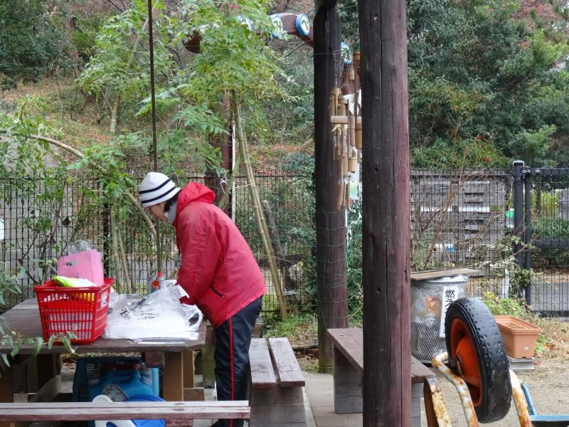 小雨降の中で作業続行・・・うみべの森を育てる会今年最後の定例活動日_c0108460_17454530.jpg