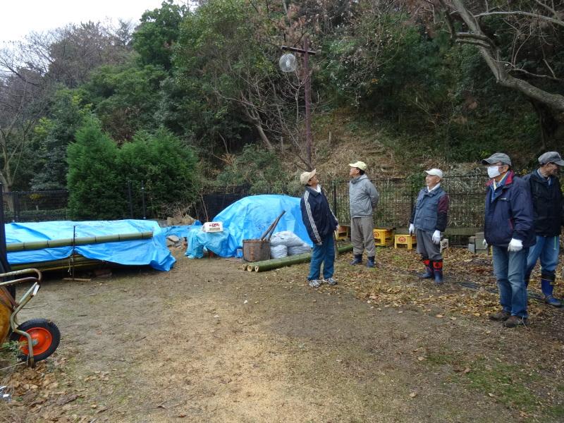 小雨降の中で作業続行・・・うみべの森を育てる会今年最後の定例活動日_c0108460_17454604.jpg