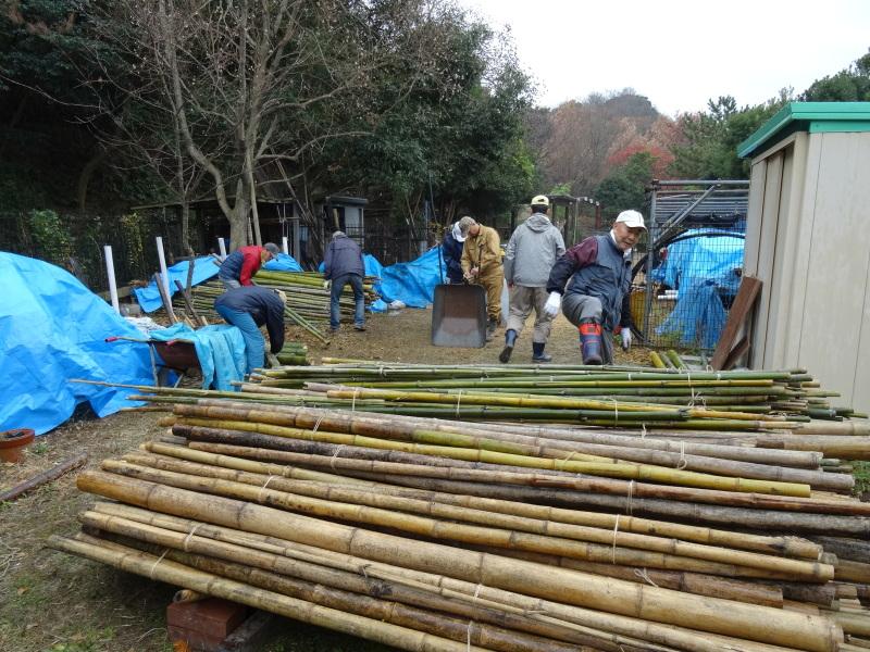 小雨降の中で作業続行・・・うみべの森を育てる会今年最後の定例活動日_c0108460_17454682.jpg