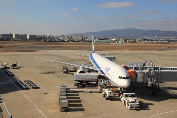 2013年 年の瀬 伊丹空港_d0202264_87286.jpg