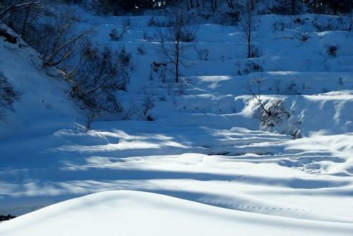 雪の棚田_a0025576_8335244.jpg