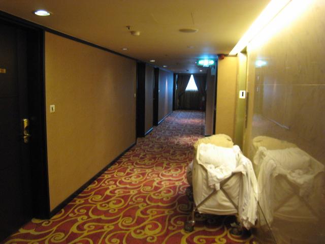 麗しの島 台湾旅行 251 慶泰大飯店 その2_e0021092_12313575.jpg