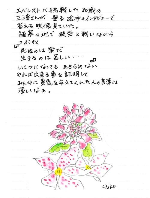 c0187600_952418.jpg