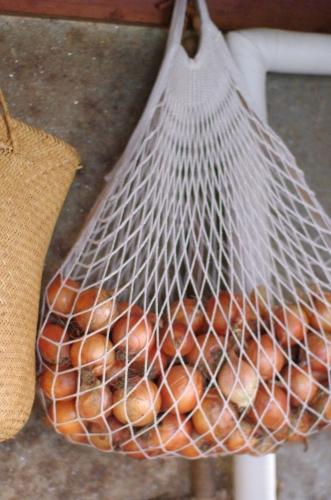 玉ネギのマリネをたくさん作る_c0110869_915576.jpg