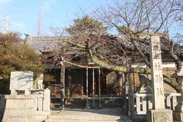 林神社_a0045381_8293348.jpg