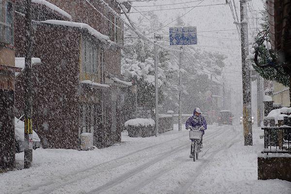 山陰の人は雪でも乗る!_f0007926_11225758.jpg