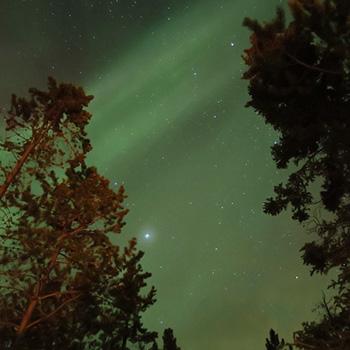 カナダ ホワイトホース滞在中に見たオーロラダイジェスト_c0060143_12425632.jpg