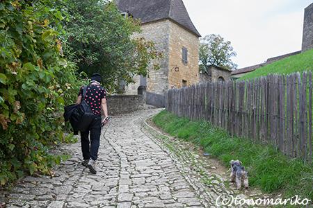 フランス、イヌとの暮らし_c0024345_2314174.jpg