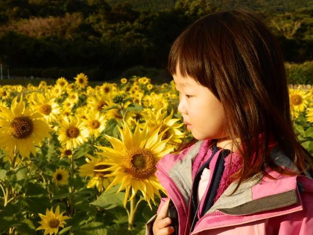 b0160957_2011113.jpg