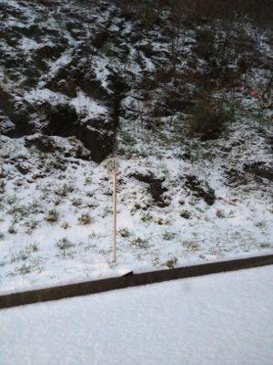 雪ふりはじめました。_f0173771_7103165.jpg