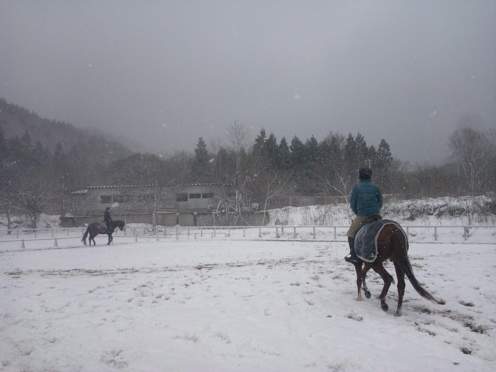 吹雪の中でも_e0186499_182271.jpg