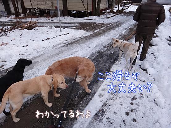 五郎の気配り_f0064906_17141453.jpg