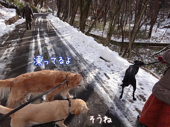 五郎の気配り_f0064906_1795336.jpg