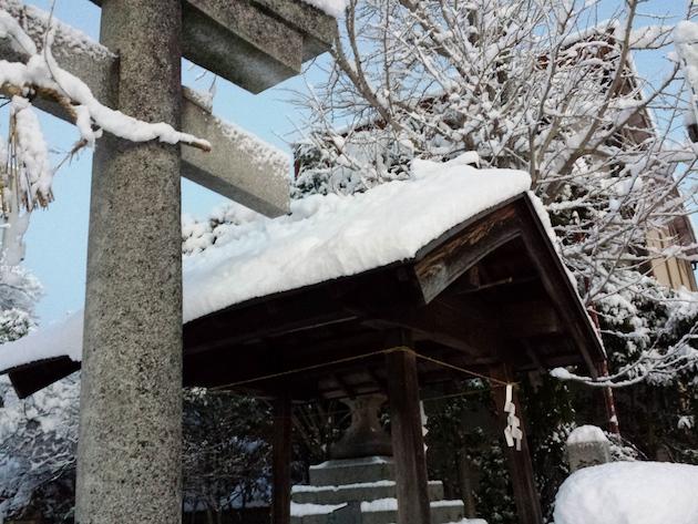 雪がつもりました_f0192307_11464627.jpg