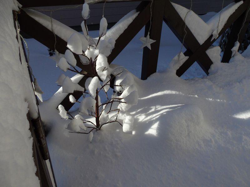 札幌市の積雪データ、エクセルファイルで公開_c0025115_21351113.jpg