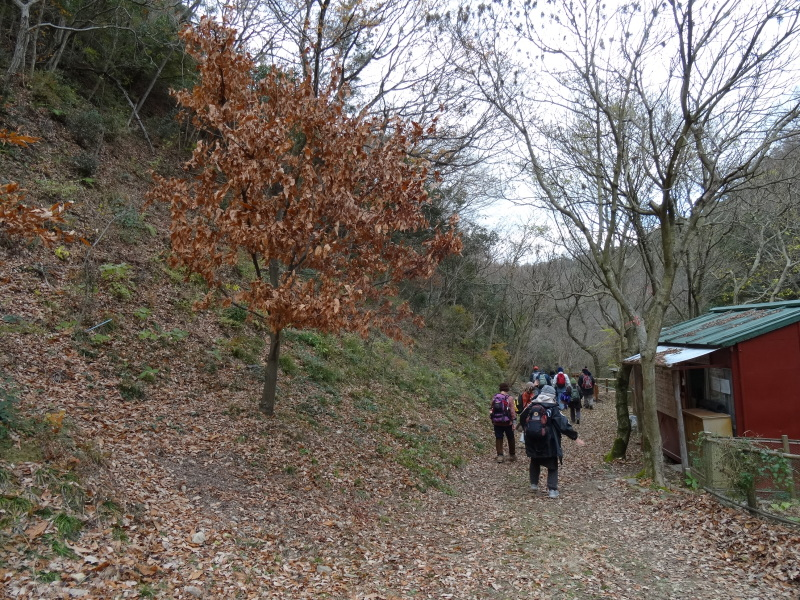 孝子の森で望年会_c0108460_23584926.jpg
