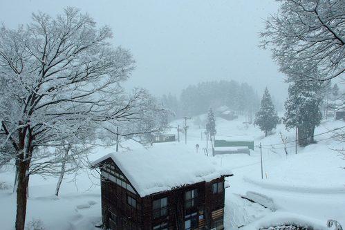 雪の情景_a0025576_1623428.jpg