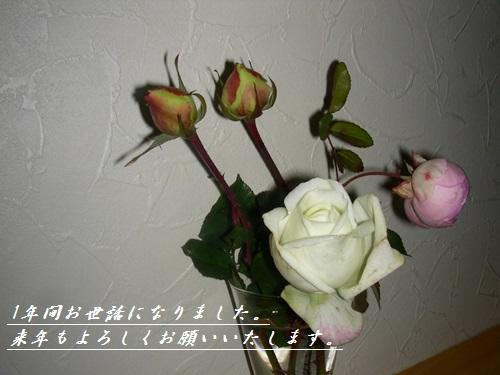 b0096584_2216144.jpg
