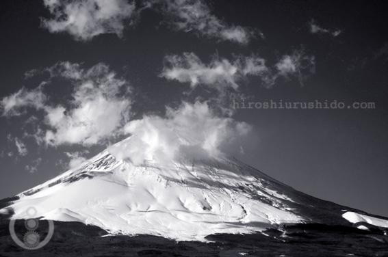 富士を望む丘のカフェ_c0229485_1353975.jpg