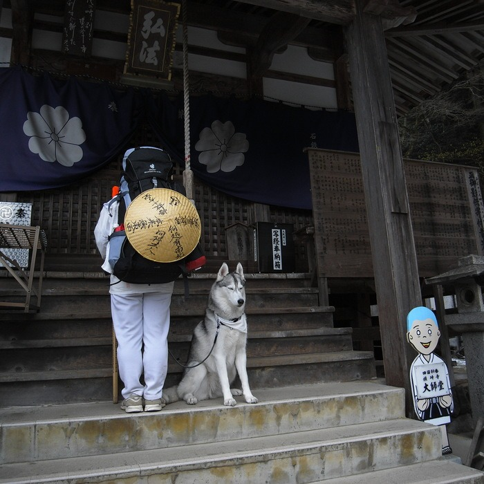 Memory of the second pilgrimage with husky HANA II_c0049299_1938137.jpg