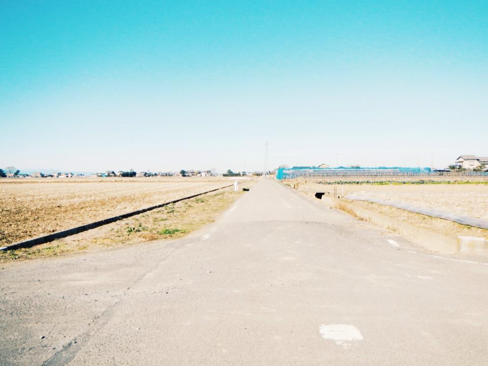 自転車に乗って行田までハンバーガーを食べに行くと人はどうなってしまうのか_c0093101_1737247.jpg