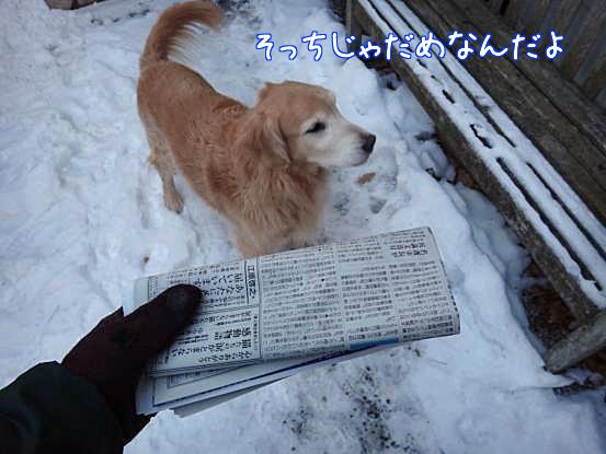 五郎のこだわり_f0064906_1645246.jpg
