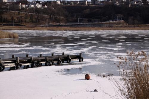 おだやかな年の瀬~雪がないね。 12月30日_f0113639_12343661.jpg