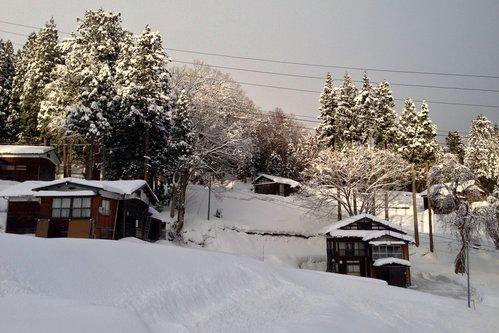 雪国の朝_a0025576_8175813.jpg