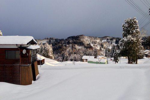雪国の朝_a0025576_8181458.jpg