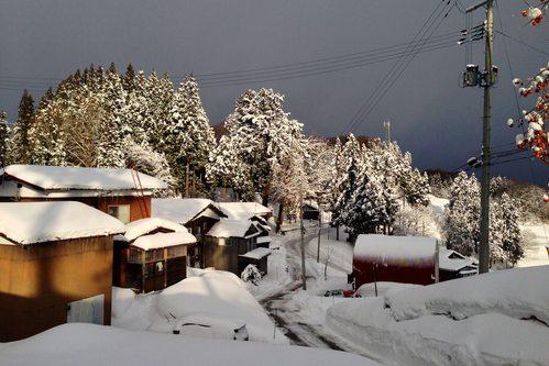 雪国の朝_a0025576_8183260.jpg