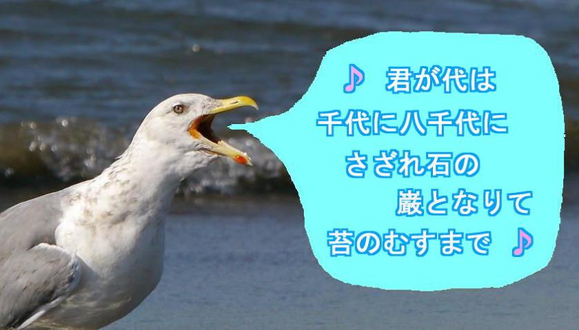 d0039021_1764012.jpg