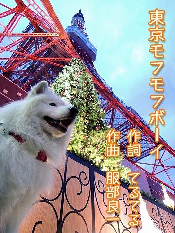 ♪ 東京モフモフボーイ ♪_c0062832_79387.jpg