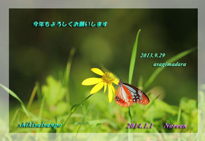d0069235_23575956.jpg