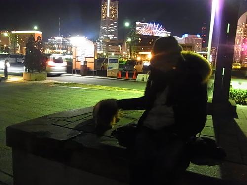夕暮れの赤レンガから大桟橋へ_b0105897_10575270.jpg