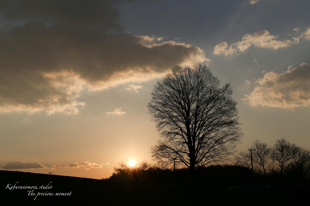 2014 新年の 夜明け 明けましておめでとう!_c0137403_17223950.jpg
