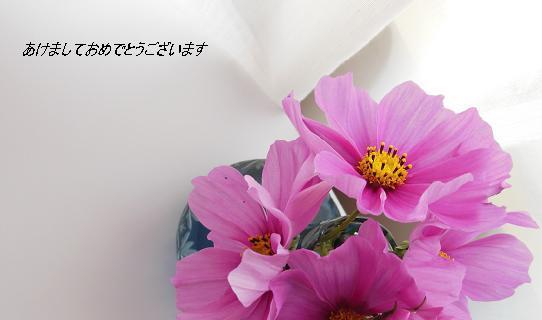 f0036820_5375076.jpg