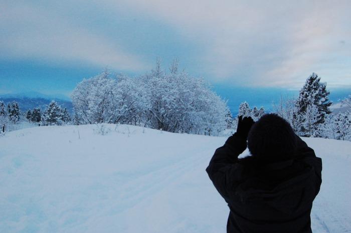 極北の動物を身近に感じれるユーコン動物保護地区_d0112928_794287.jpg