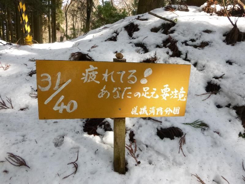 愛宕山へ_c0113733_1262820.jpg