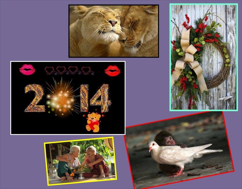 Happy New Year 2014!_b0213435_1515244.jpg