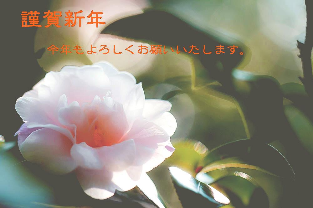 d0188155_1828841.jpg