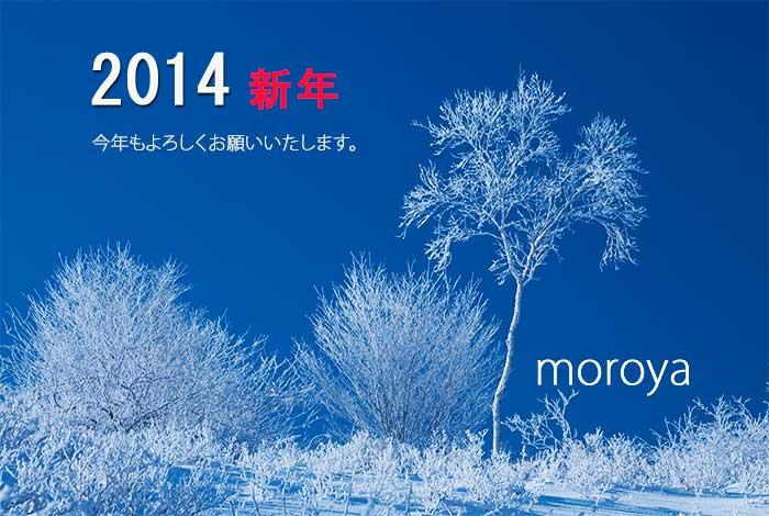 今日の1枚〜新年にあたって_c0085877_85430.jpg