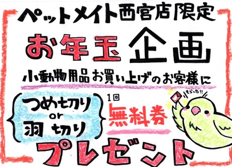 140102 小動物のお年玉!_f0189122_16165637.jpg