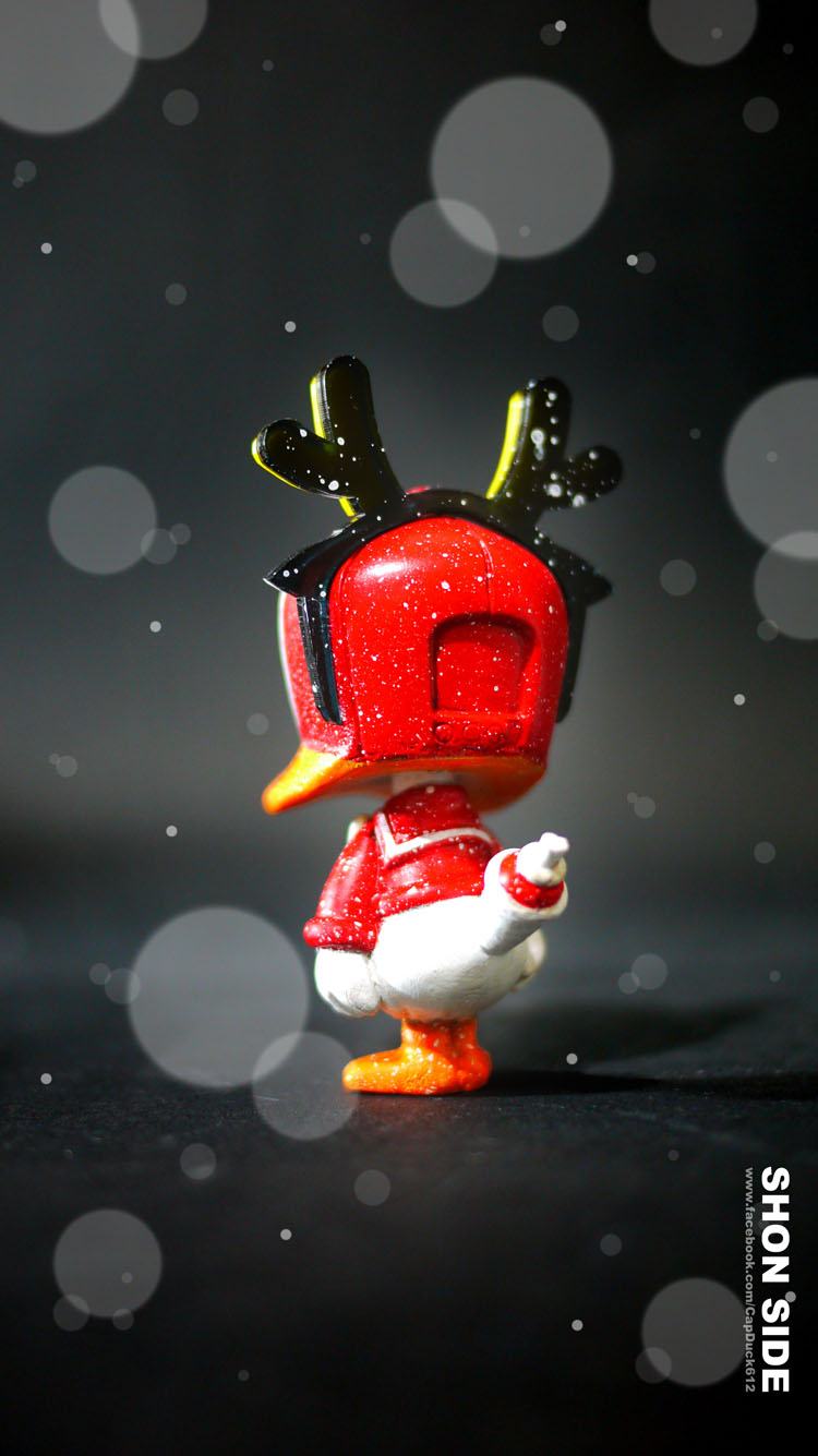 新春初売り第2弾はCap Duck Elk_a0077842_106483.jpg