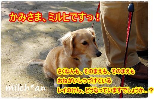 b0115642_2025166.jpg