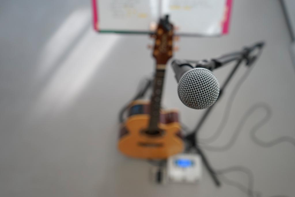 14年1月2日・初パスタ・初ギャラリー・初ギター_c0129671_1756332.jpg