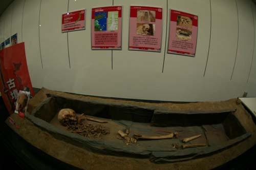 「発掘された日本列島2013展」で見たこと_f0211178_16591822.jpg